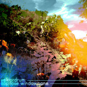 Vektordrum - Capitose Windowpane