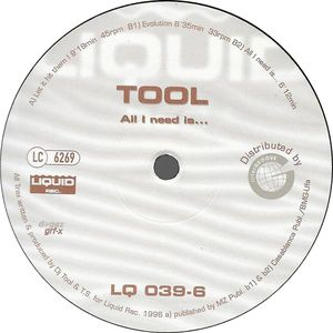 Tool - All I Need Is ...